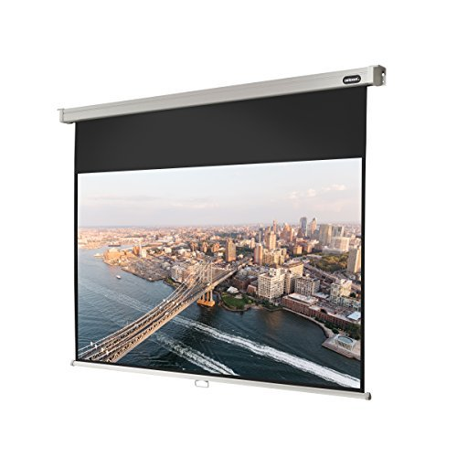 celexon 130 Manual Professional Plus pull down projection screen 110 x 69 inches viewing area 16:10 format Wall or ceiling mounting Gain 1.2 [並行輸入品] B07BJ1HG5V