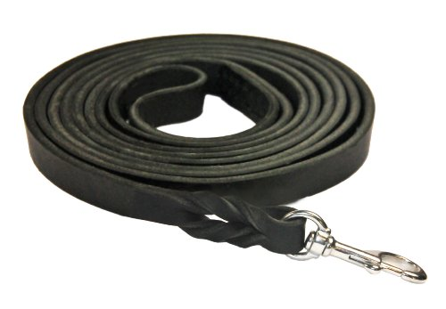 Dean and Tyler Braided Track Dog Leash, Black 13.5-Feet by 1/2-Inch Width With Handle And Stainless Steel Hardware. by Dean & Tyler