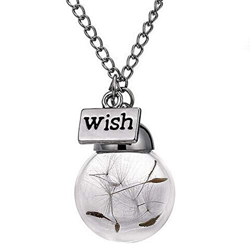 Wish Bottle Necklace,Haluoo Women Girls Creative Handmade Glass Wish Bottle With Real Dandelion Seeds Pendant Necklace Silver Long Sweater Chain Necklace Birthday Chrismas Graduation Gifts (Clear)