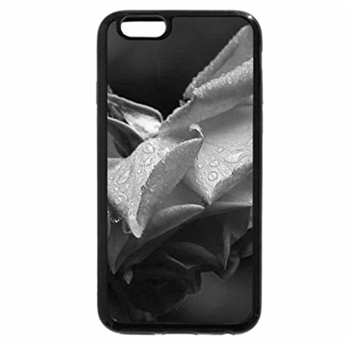 iPhone 6S Case, iPhone 6 Case (Black & White) - Raining on a rose