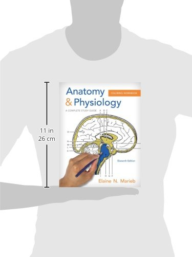 Anatomy & Physiology Coloring Workbook: A Complete Study Guide
