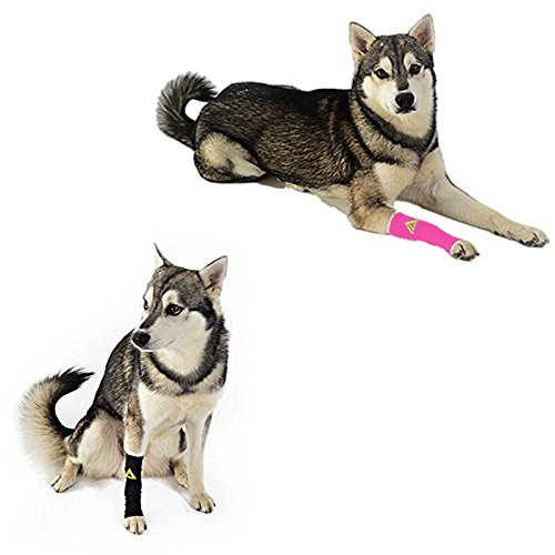 Canine Dogs Compression Sleeve Injury Support fatigue, joint, tendon and ligament laxity (instability)