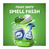 Gain flings! Laundry Detergent Pacs plus Aroma
