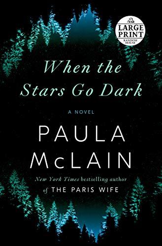 Book Cover: When the Stars Go Dark: A Novel