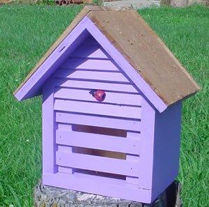 Bird Houses by Mark Homestead Ladybug House - Lavender by Bird Houses by Mark