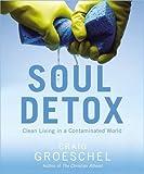 soul detox study guide pdf