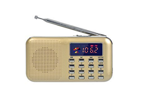 eJiasu Mini Digital USB FM Portable Audio Radio Support MP3 Music Player TF Card/USB Port with LED Screen Display/Flashlight/Radio Antenna/Pendant Groove for PC iPod iPhone(Gold)