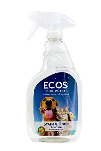 (Earth Friendly Products Pet Stain/Odor Remover 22oz)