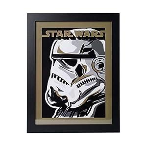 Grupo Erik PE30X40CM0019 Cuadro Decorativo Star Wars Stormtrooper, Stormtrooper 15