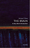 The Brain: A Very Short Introduction (Very Short Introductions)