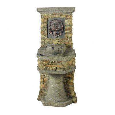 Lion Head Outdoor/Indoor Water Fountain Review