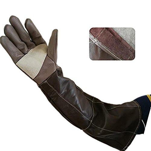 DAN Animal Handling Anti-bite/Scratch Gloves for Dog Cat Bird Snake Parrot Lizard Wild Animals Protection Gloves