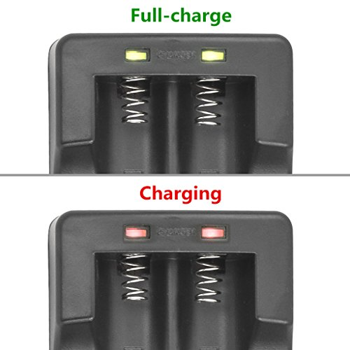 Kastar 18650 Dual Rapid Intelligent Charger & VTC4 Battery (2 Pack), Sony VTC4 Quality Rechargeable 2100mAh (High Drain 30A) Flat Top for Electric Tools, Toys, LED Flashlights and Torch ect.