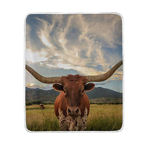 Longhorns Furniture Texas Longhorns Furniture Longhorn