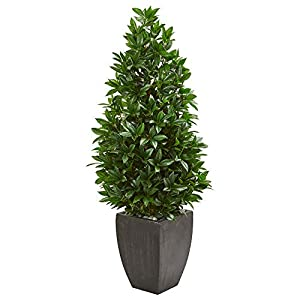 Nearly Natural 9372 56-in. Bay Leaf Cone Topiary Artificial UV Resistant in Black Planter (Indoor/Outdoor) Silk Trees Green 55