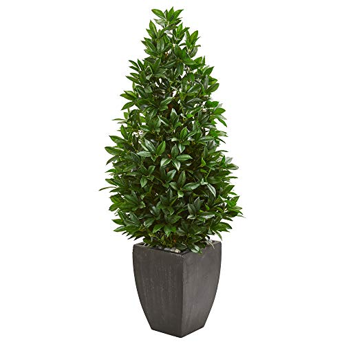 Nearly Natural 9372 56-in. Bay Leaf Cone Topiary Artificial UV Resistant in Black Planter (Indoor/Outdoor) Silk Trees Green