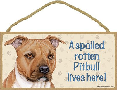 (SJT61953) A spoiled rotten Pitbull (Brown color) lives here wood sign plaque 5