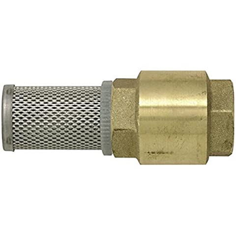Brass check valve strainer 3 4 by Boutt