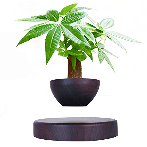 Floating Flower Pot - Ozzptuu Creative Magnetic Levitating Air Bonsai Pot Prsent Floating Plant Pot for Home Office Display Decoration (Not Include Plant)