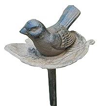 Carver's Bird in Leaf