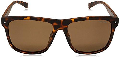 à 6041 carrés Havana foncé de Dark 086 Bronze soleil Polaroid Havane Polarised lunettes plat la 56 S PLD polarisés tqfXfxwP