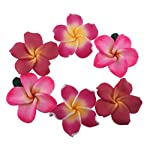 Pack-of-50-Pieces-Beautiful-Colorful-Handmade-Mini-Diameter-14-Artificial-Frangipani-Plumeria-Hawaiian-Flower-For-Wedding-Party-Home-Office-Decoration-Handwork-Mothers-Day-Gift-Assorted-Color