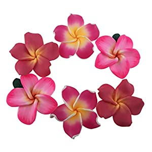 "Pack of 50 Pieces Beautiful Colorful Handmade Mini Diameter 1.4"" Artificial Frangipani Plumeria Hawaiian Flower For Wedding Party Home Office Decoration Handwork Mother's Day Gift (Assorted Color) 13"