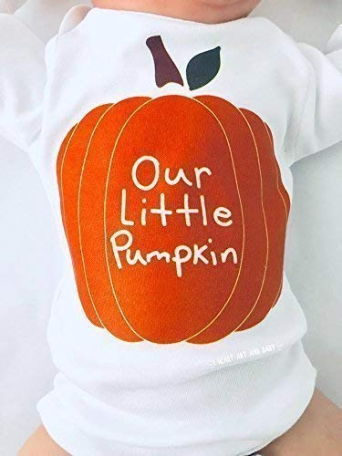 Our Little Pumpkin Baby Outfit, Pumpkin Shirt, Fall Baby Clothes, Long Sleeve, 6-12 Months
