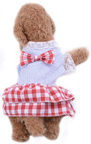 Freerun British Style Lace Mesh Plaid Soft Cotton Dress Skirt Costumes for Small Pet Dog Cat Puppy - RedWhite, M