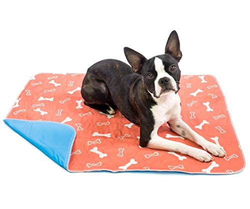 Washable & Reusable Pee Pads for Dogs - Puppy Training - (2-Pack) XLarge - For Housebreaking, Incontinence, Odor Control, Whelping & Travel - Fast Absorbing & Waterproof!