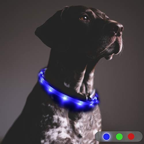 (Toozey LED Dog Collar, 20 Hrs Runtime, USB Rechargeable, IP68 Water & Cold Resistant, 3 Modes Light Up Collar for Pet Night Safety, One Size Fits All Dogs & Cats, 10-27.5