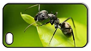 Hipster indestructible iPhone 4S covers Black Ant PC Black for Apple iPhone 4/4S