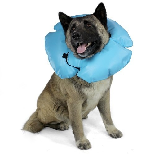 VetOne Air-Tight Inflatable Dog Collar (Large) Blue ()