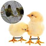 50 Pack Baby Chick Leg Hobbles Hobbling Chicken