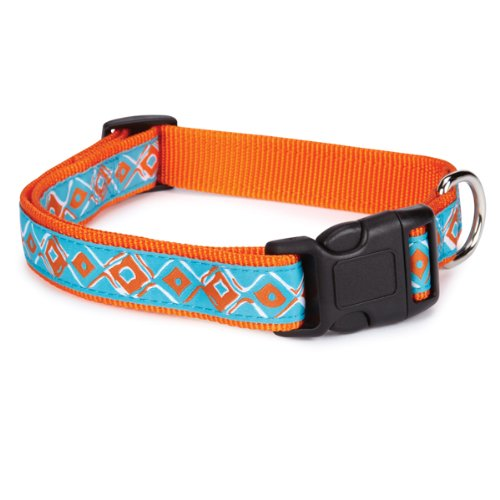 Zack & Zoey Nylon Brite Diamonds Dog Neck Collar, 6-10-Inch, Orange (Zoey Nylon Brite Diamonds)