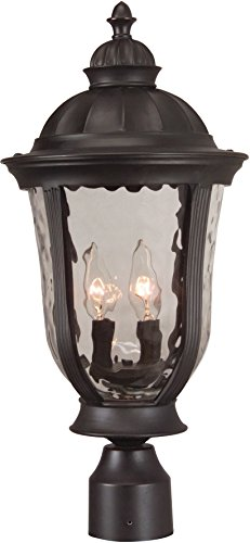 Craftmade Z6025-92 Post Mount Lights with Hammered Clear Glass Shades,