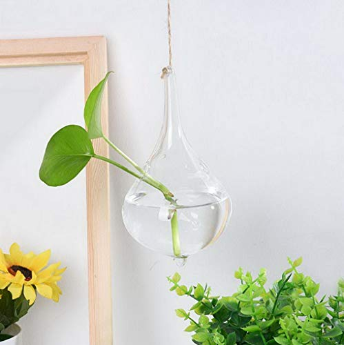 Werrox Hanging Glass Ball Vase Flower Plant Pot Terrarium Container Decor (D) | Model WDDNG -2911