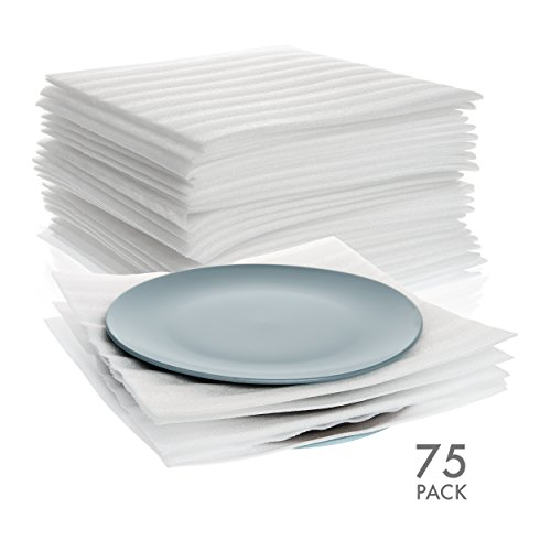Arcadia Dinner Plate (75 Count - 12