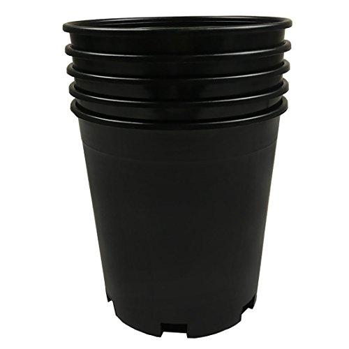 CaliPots 5-Pack 1 Gallon Premium Black Plastic Nursery Plant Container Garden Planter Pots (1 Gallon)
