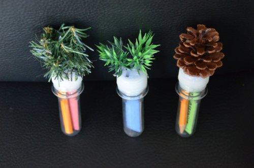 3x Petling mit Tanne Gras und Tannenzapfen mit Logbuch und Stift Set Komplett Paket Geocaching Versteck