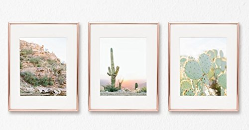Cactus Print Set of 3 Nature Wall Art Scandinavian Minimalist