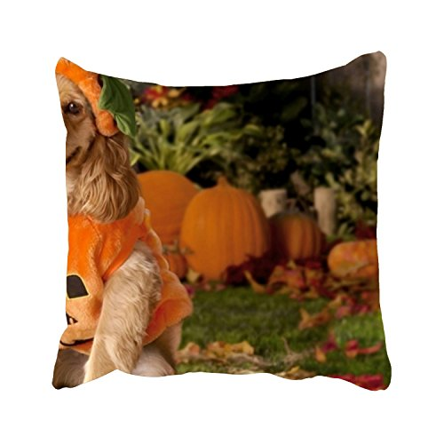 Pillowcases Dog Dressed As A Pumpkin Throw Pillow Case Sofa Bed Home Decor Cushion Cover 26 X 26 Inches Zippered ()