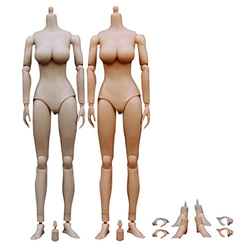 MagiDeal 2 Sets 1/6 Scale Large Busts Female Action Figure Body with Accessories for BBI TTL Hot Toys
