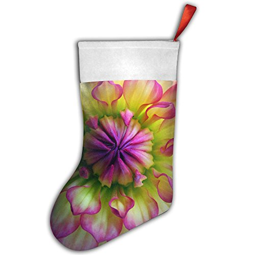 Dahlia Stockings - KSSChr Colorful Dahlia Wallpaper Christmas Stocking Home Party Decorate