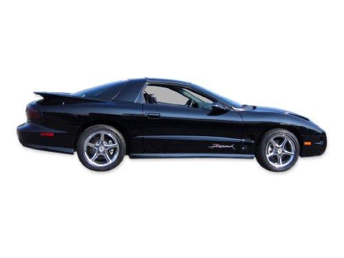 - 1993 1994 1995 1996 1997 1998 1999 2000 2001 2002 Pontiac Firehawk Decals & Stripes Kit - BLUE / GREEN