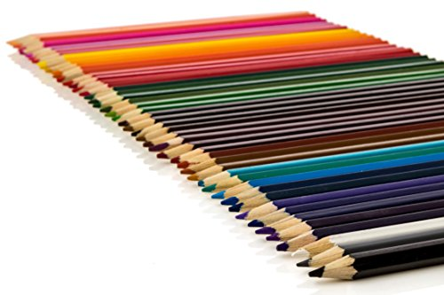 Colored Pencil Set 7 Inch Pack Of 48 For Coloring For The