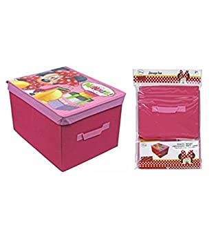 Captivating Minnie Mouse Storage Box