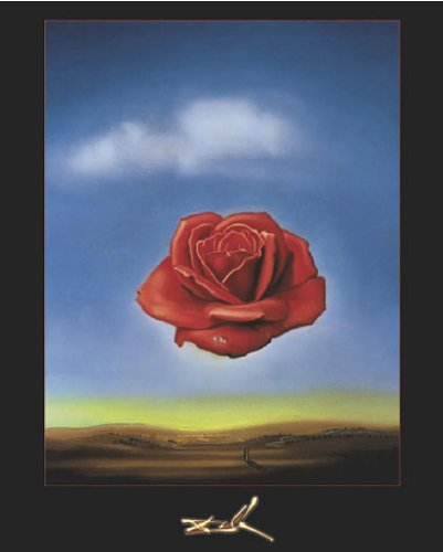 (Salvador Dali The Rose Meditative Surrealist Art Poster Print 16x20)