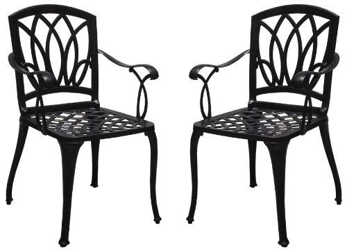 2 Cast Aluminum Dining Arm Chairs for Outdoor Patio Furniture WZ-170
