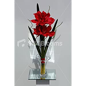 Silk Blooms Ltd Red Real Touch Amaryllis Artificial Vase Display for Your Home 97